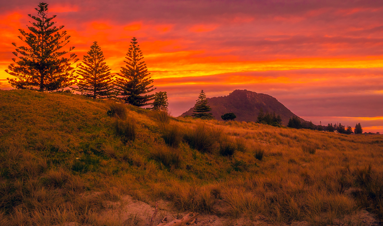 Sunset beyond the dunes. 2018-08-12