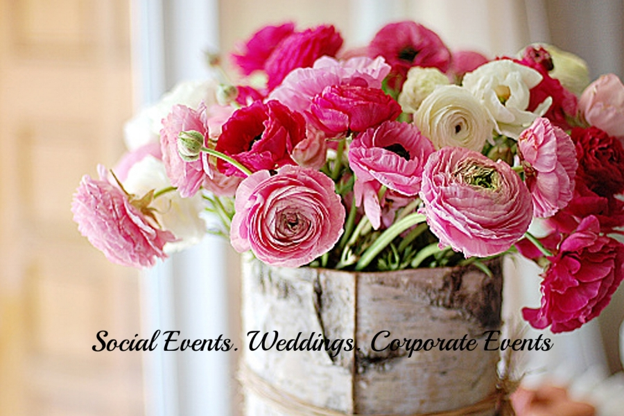 Social  & Corporate Events