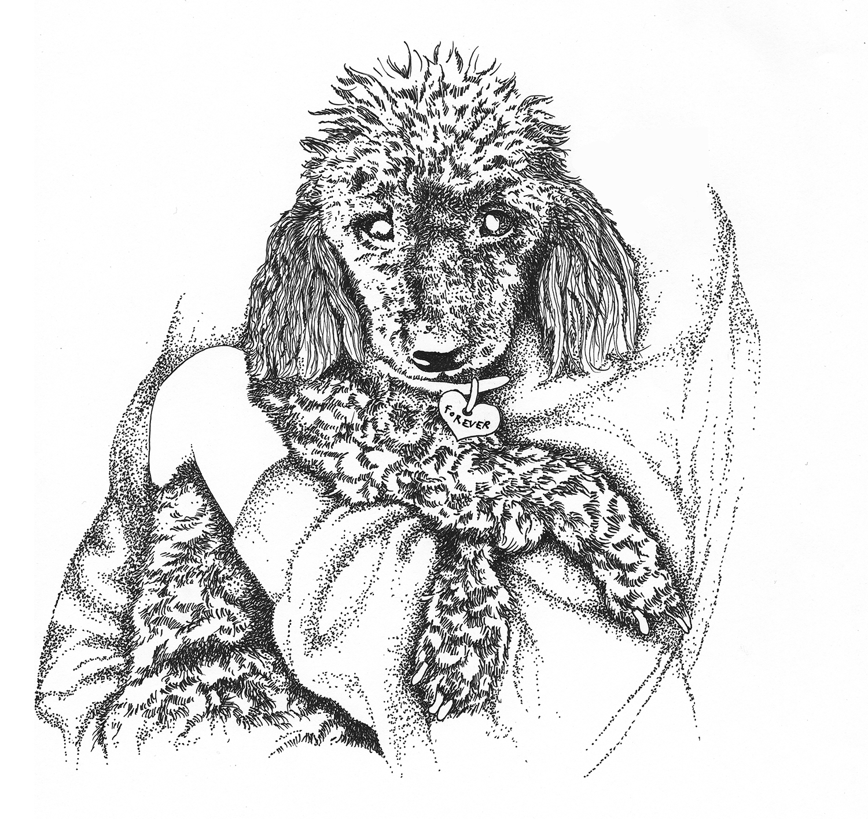 rbtq_Illustration_Seiser_Illustratorin_Hamburg_Love_Pudel_dots.jpg