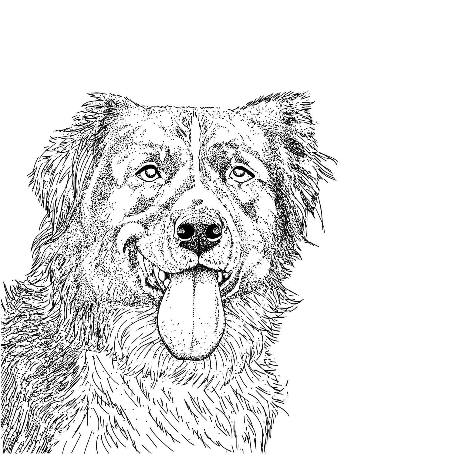 rbtq_Illustration_Seiser_Illustratorin_Hamburg_Fantasie_Hund_Karte_dots_Titel.jpg