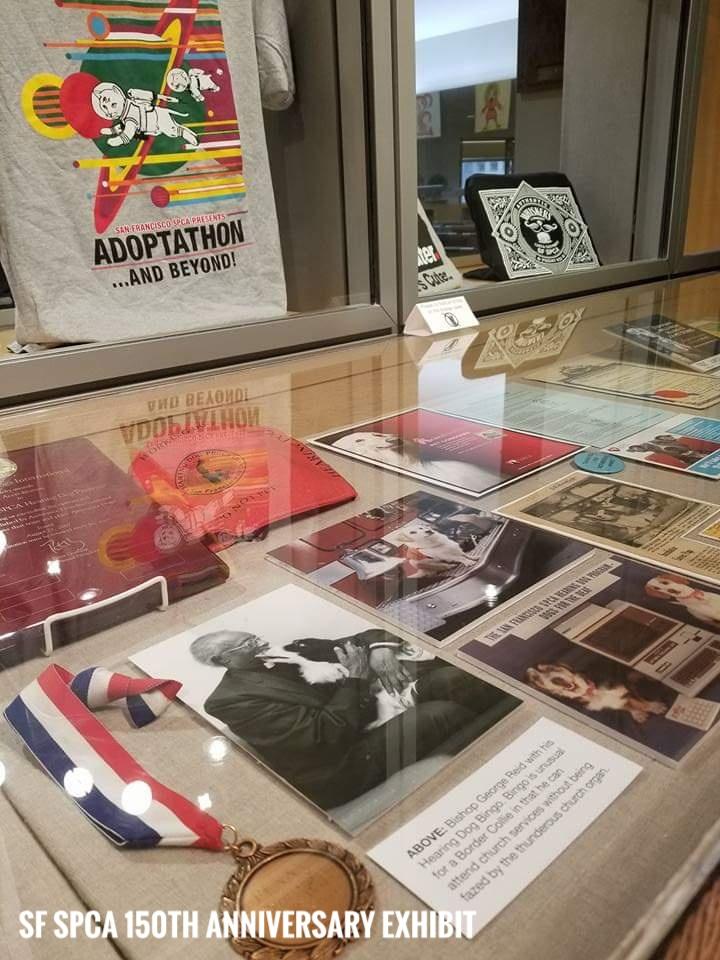SF SPCA 150th Anniversary Exhibit