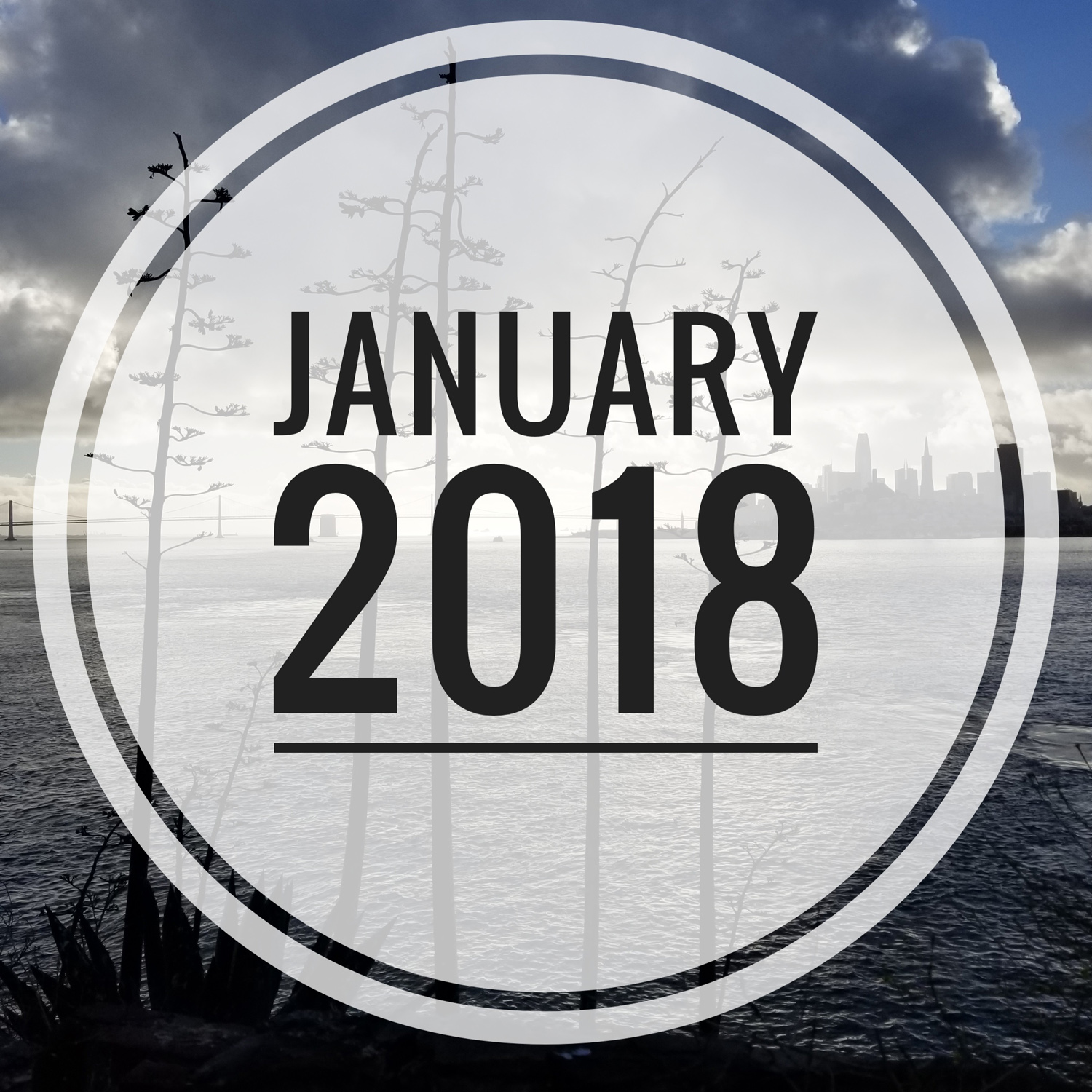 Let the 2018 year in review begin!