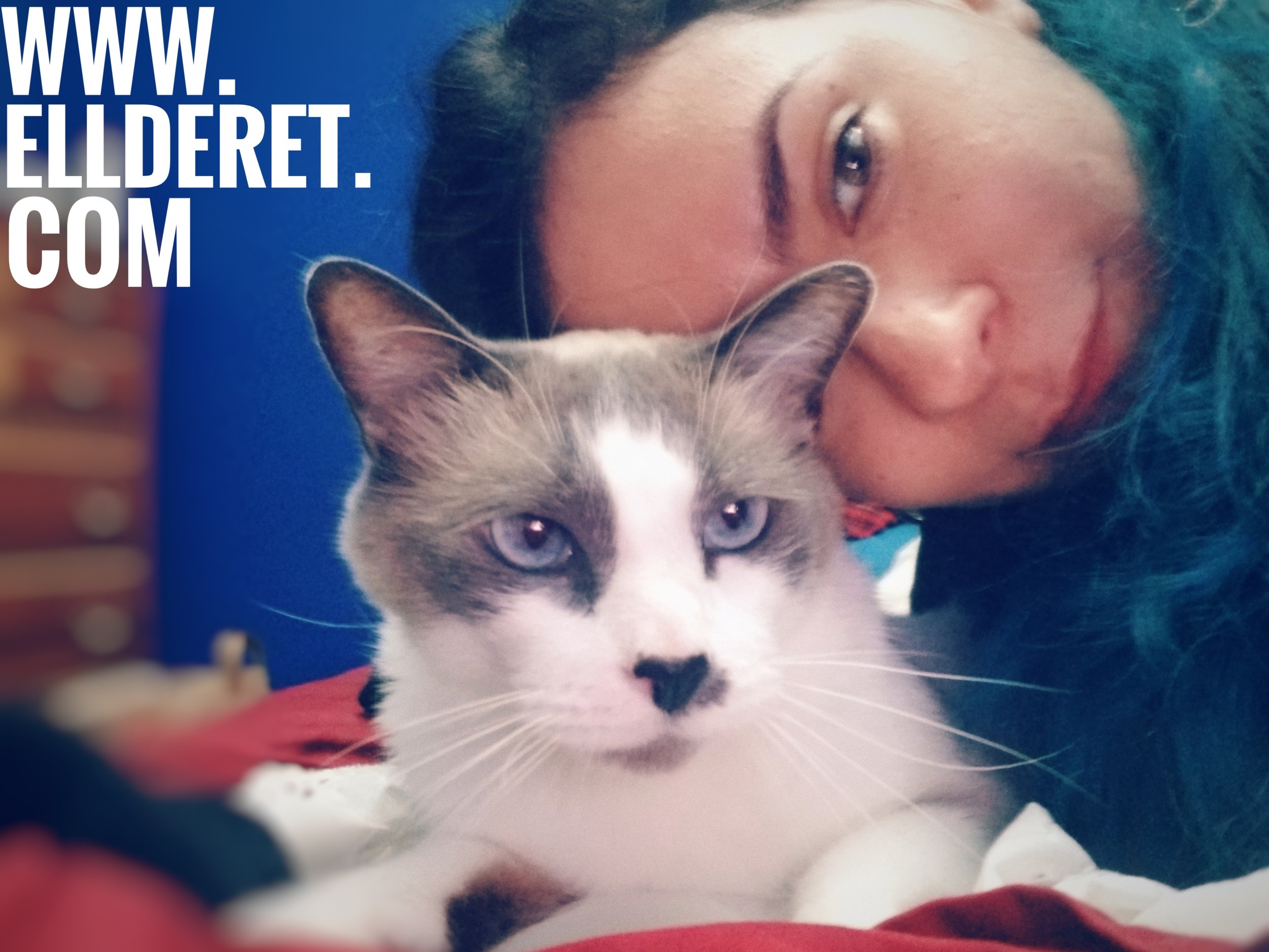 em-markoff-caturday-ellderet-selfie.jpeg
