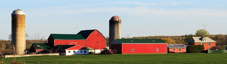 Family farm with home, barn and grain silos
