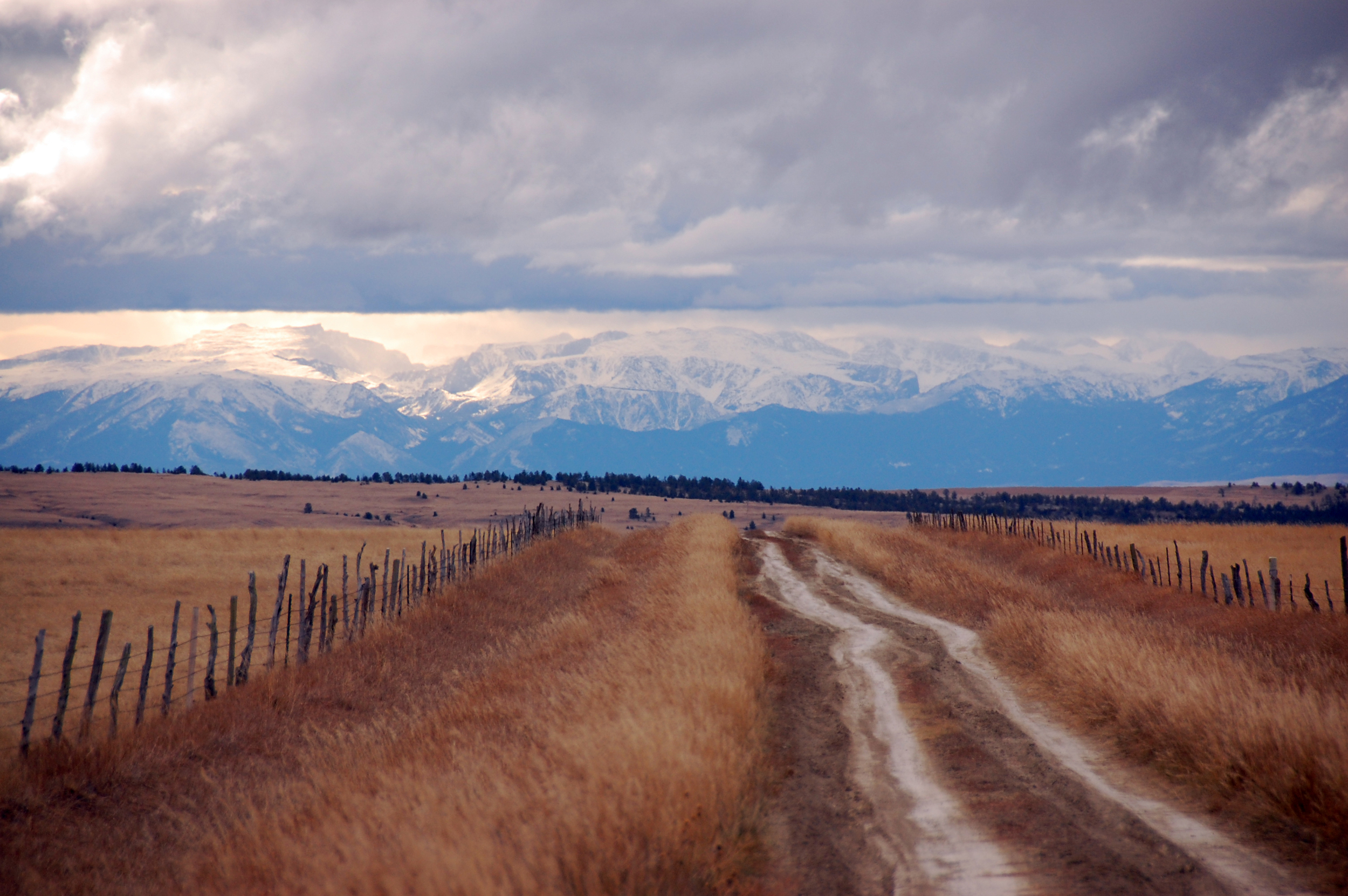 Interior road on Montana ranch
