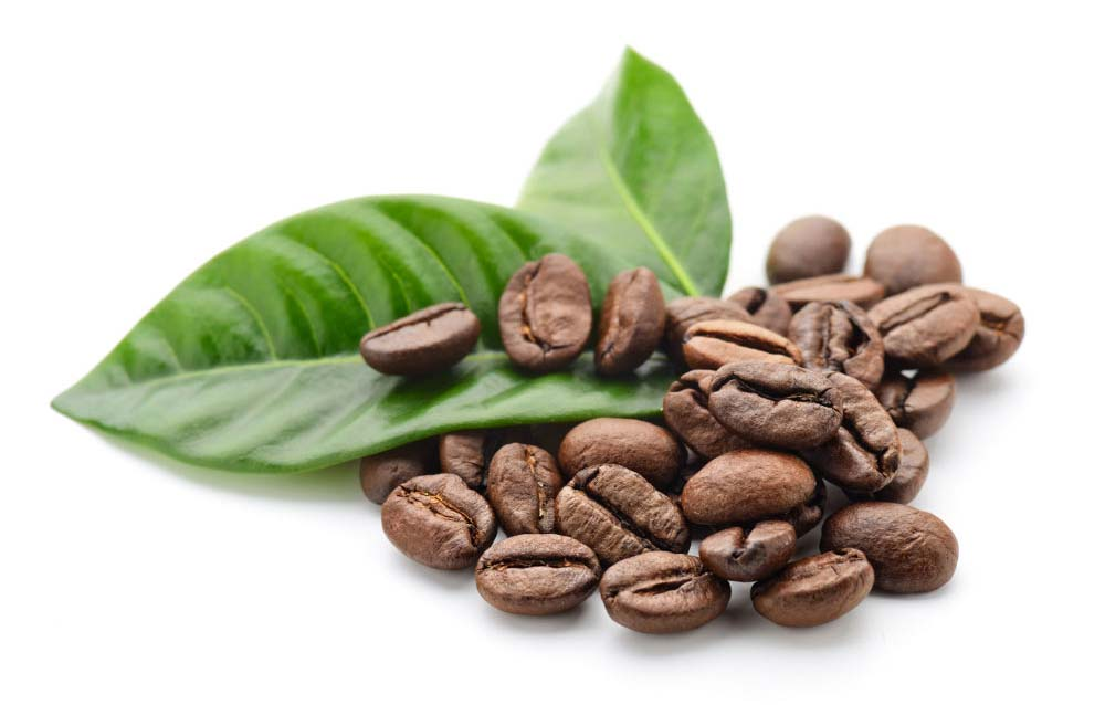 Coffee_Beans_&_Leaf_sm.jpg