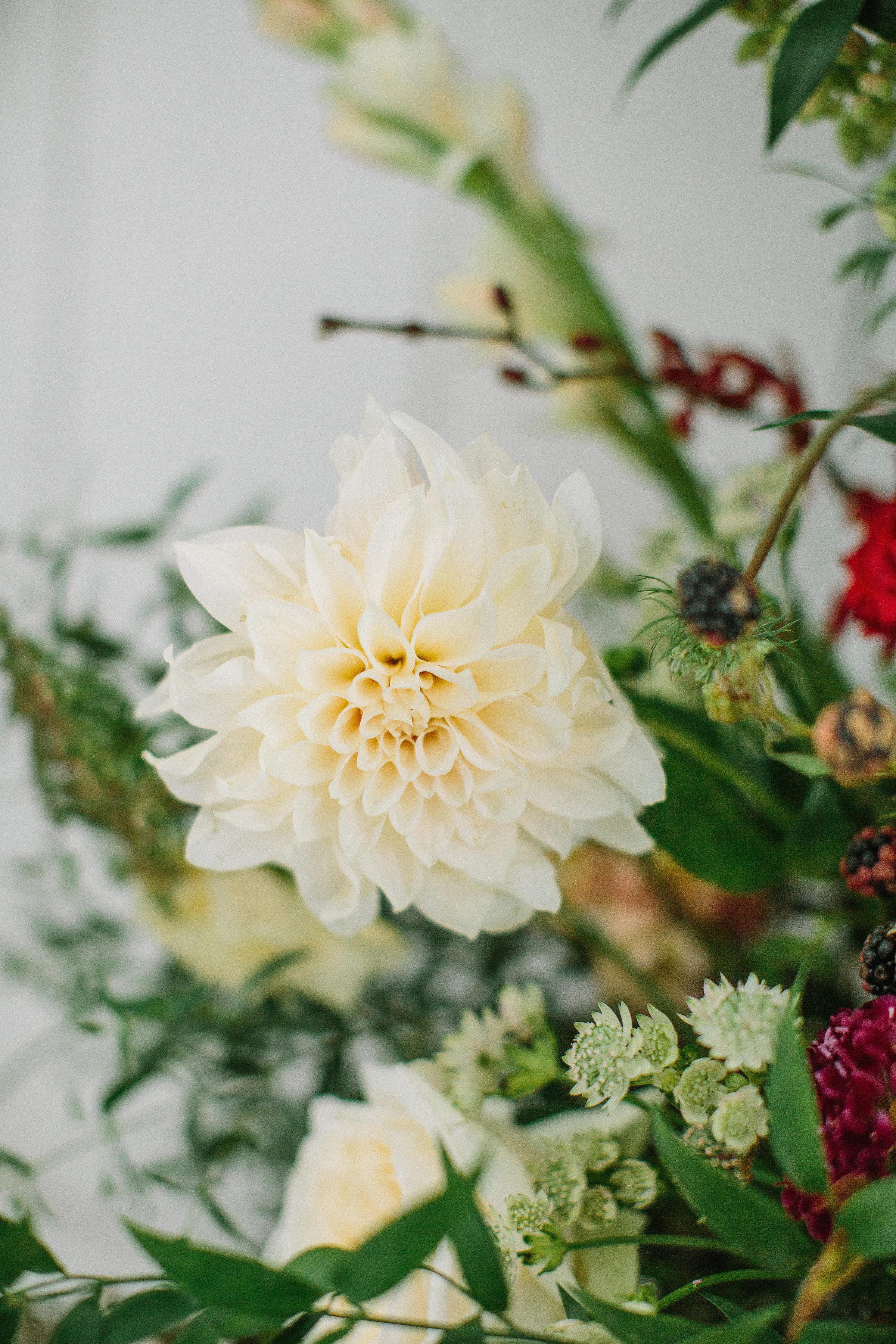 Ellen-Ashton-Photography-White-Sparrow-Weddings13.jpg