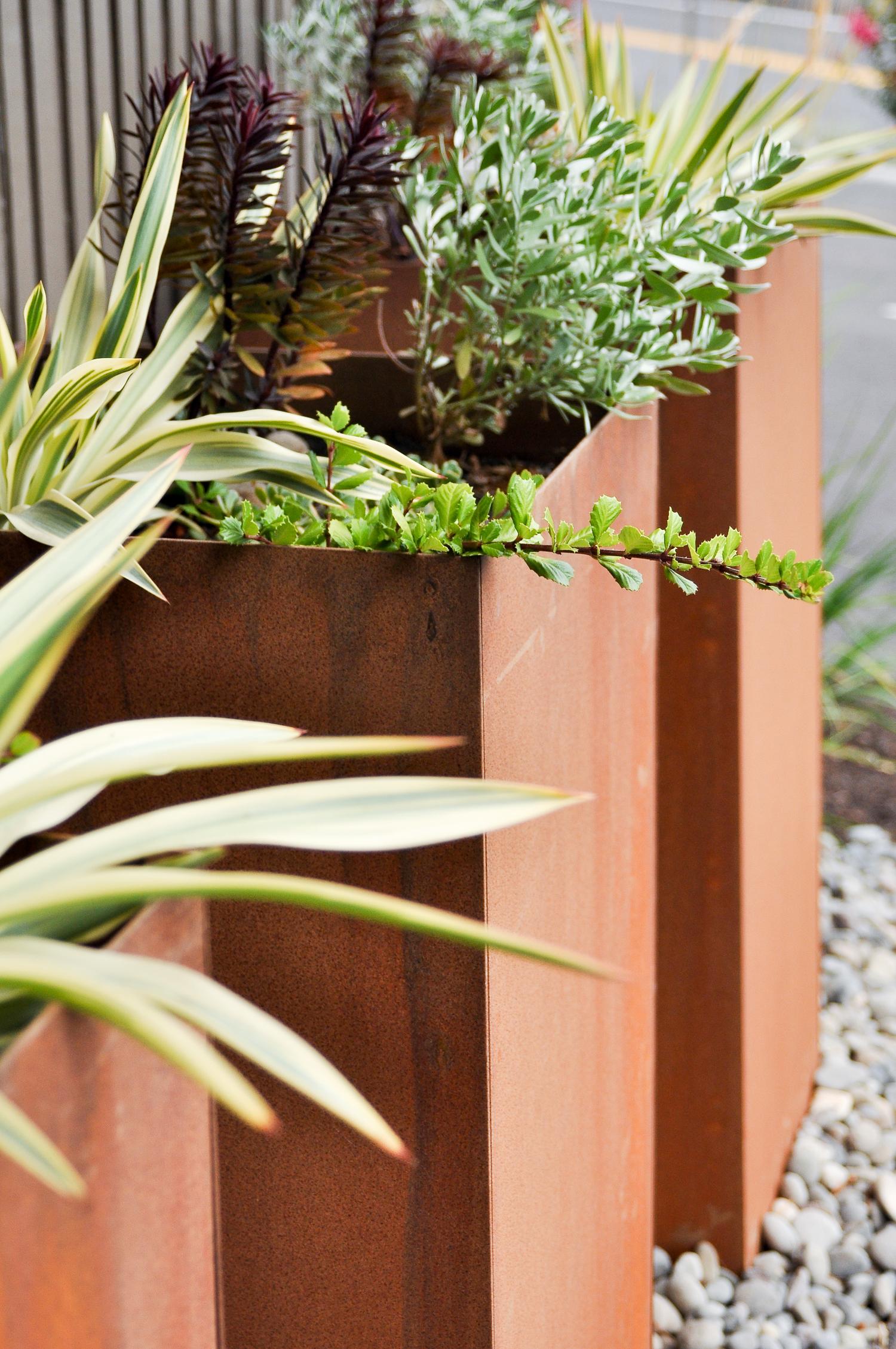 Boise Eliot Modern Pistils Landscape Design-6.jpg