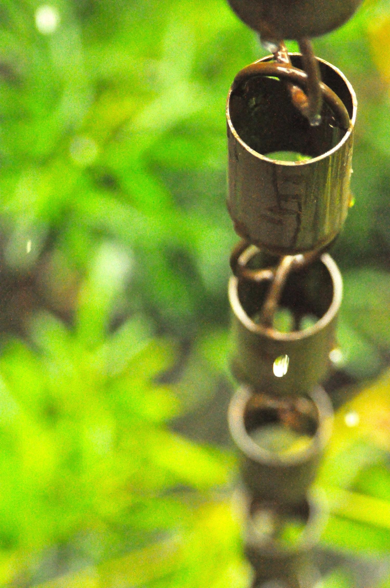 humboldt_rain_chain.jpg