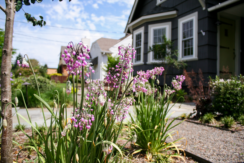 Beaumont - Pistils Landscape Design-16.jpg
