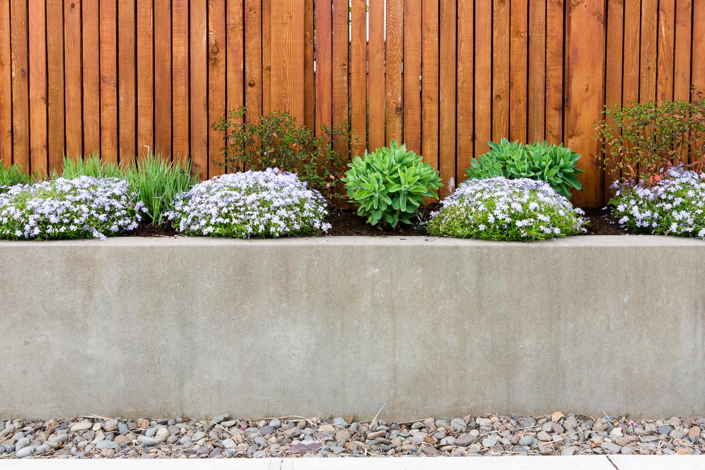 Rose City Park - Pistils Landscape Design-5.jpg