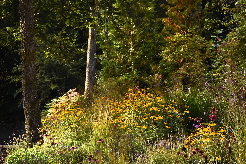 Forest Park - Pistils Landscape Design-21.jpg