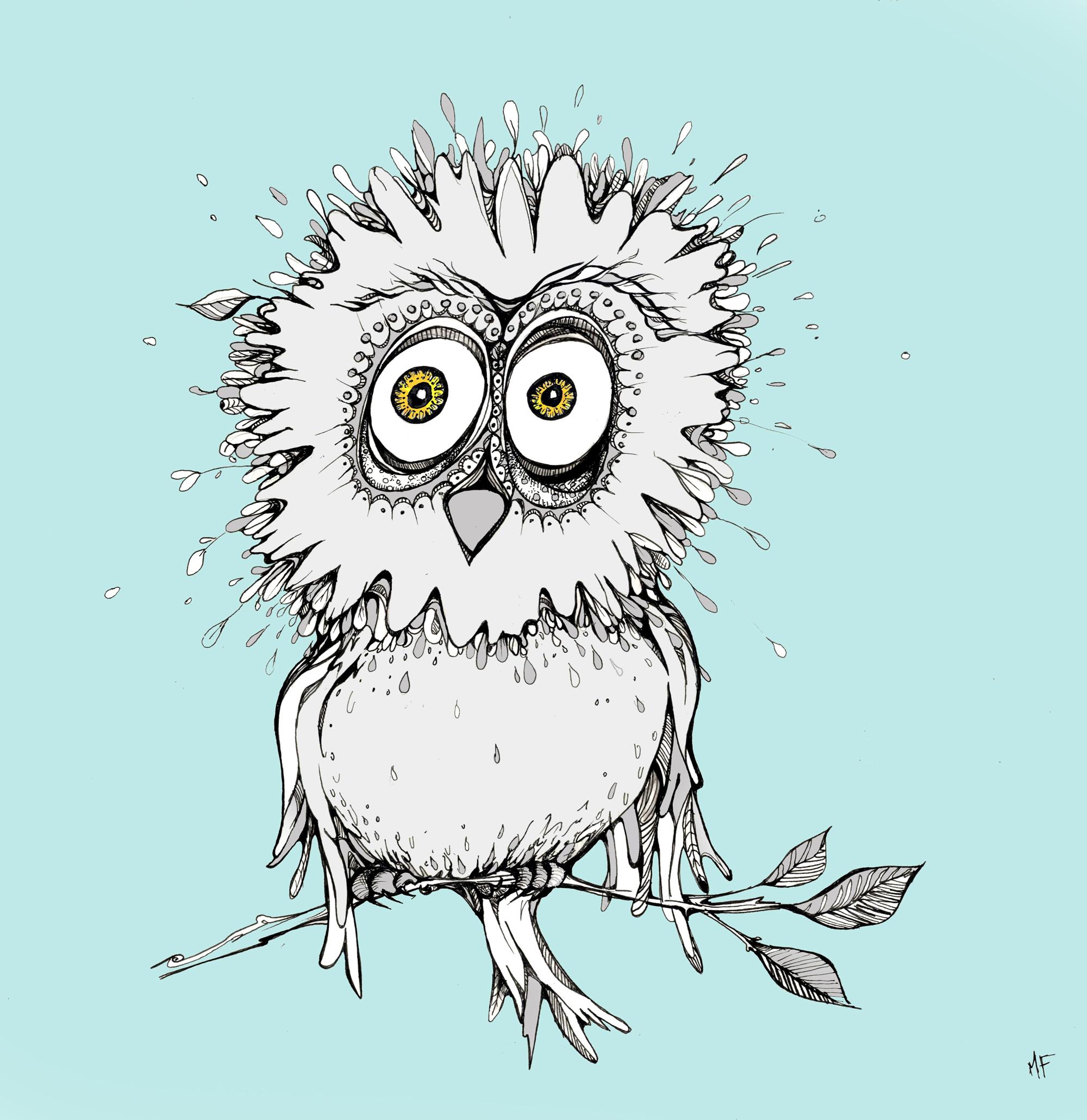 Owl_teal.jpg