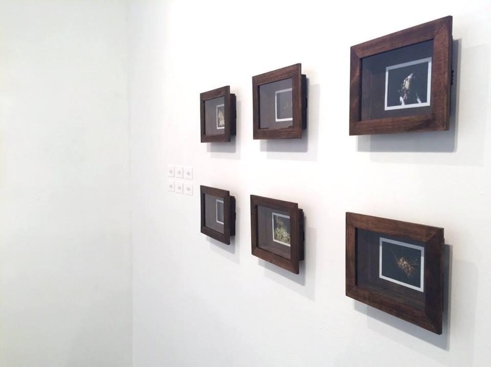 Strangers Collective- No Land Exhibition- Wheelhouse Art- Santa Fe New Mexico 34.jpg