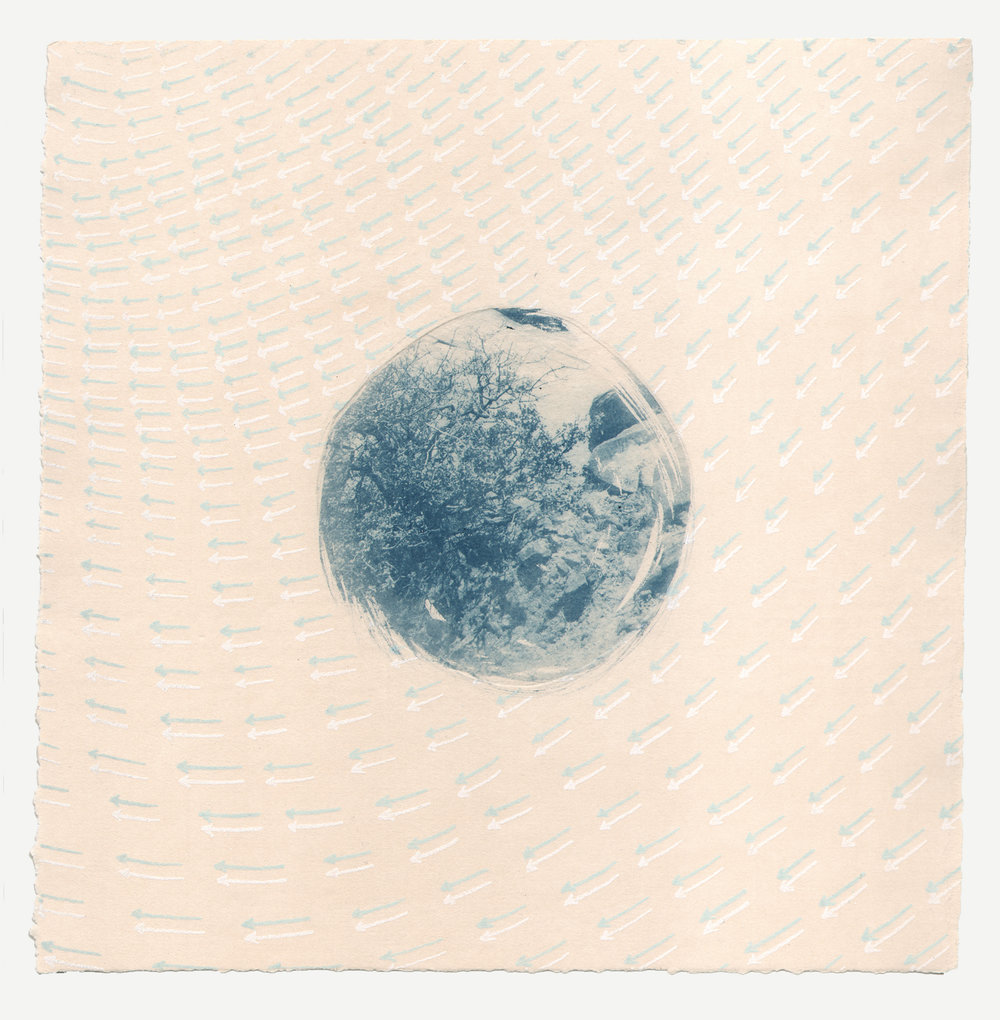 Barrios,+Indicator,+2015,+intaglio+type,+cyanotype,+10+x+10+in.jpg