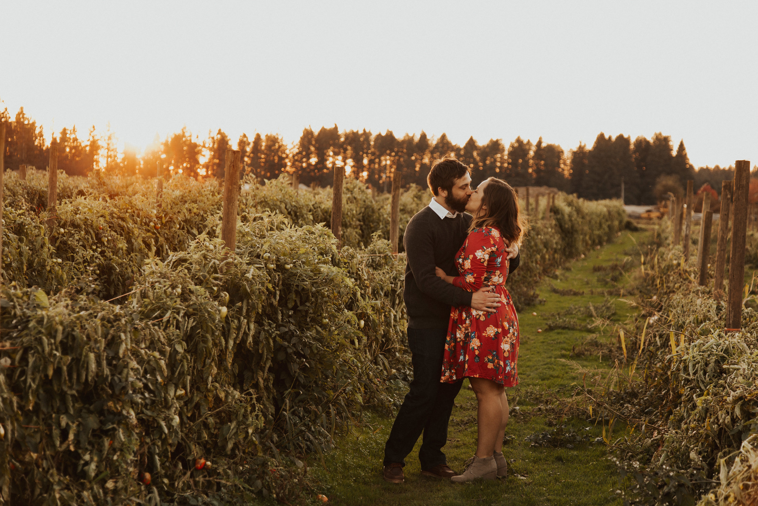 August-Muse-images-taylor-kelsey-vancouver-pumpkin-patch-washington-engagement-11.jpg