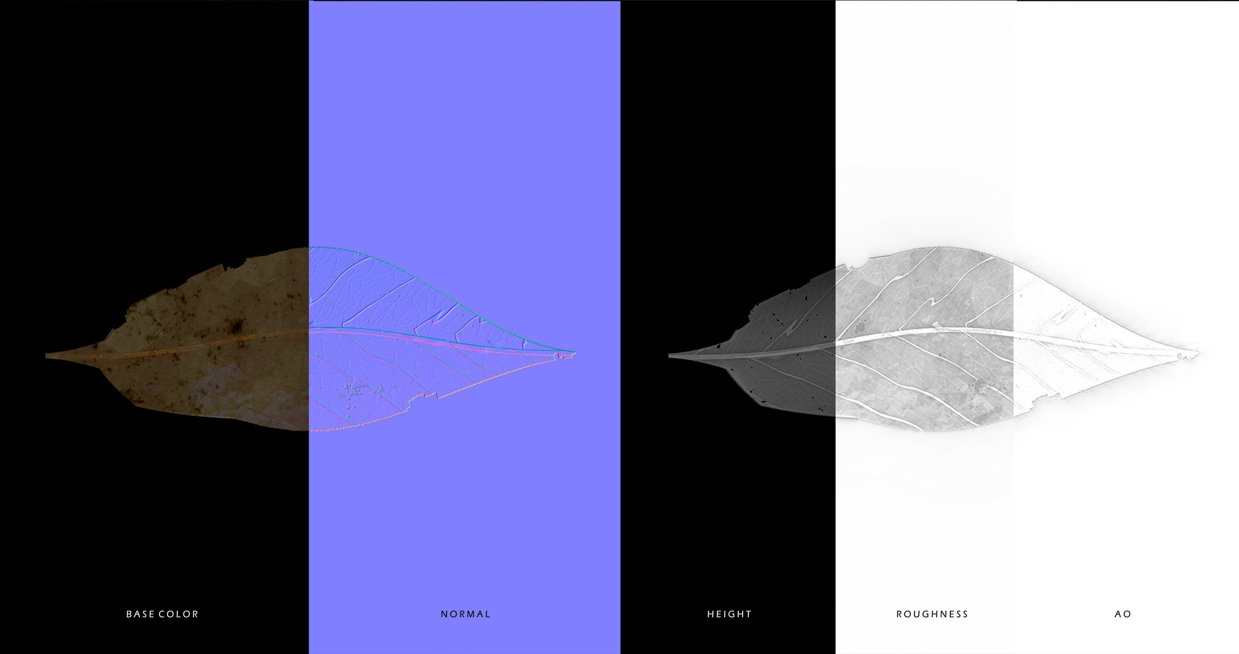 mimipark_procedural_leaf_07.jpg