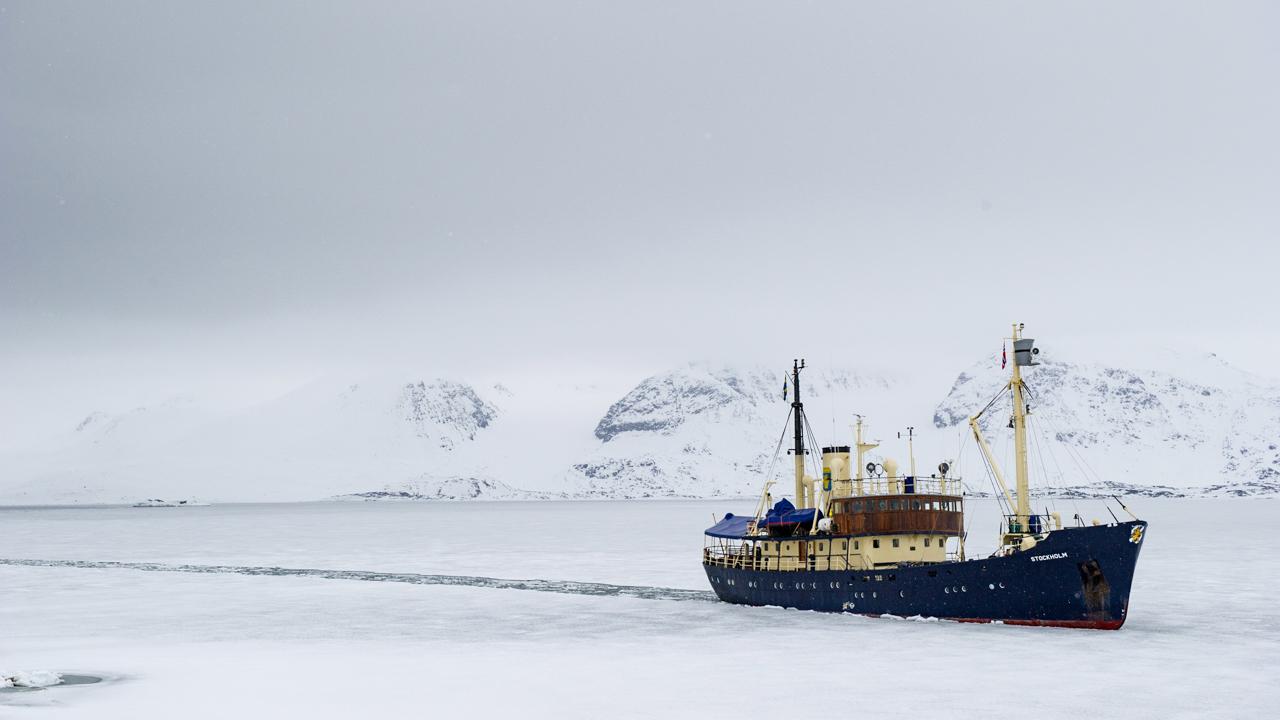 Svalbard - May 2015 -