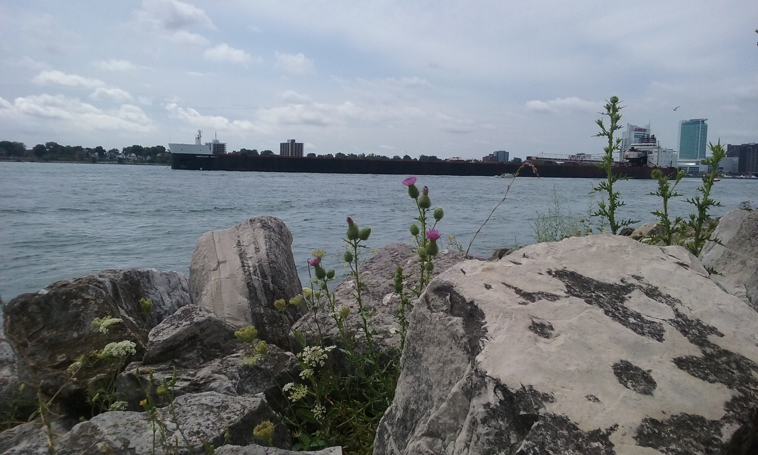 Freighter on Detroit River