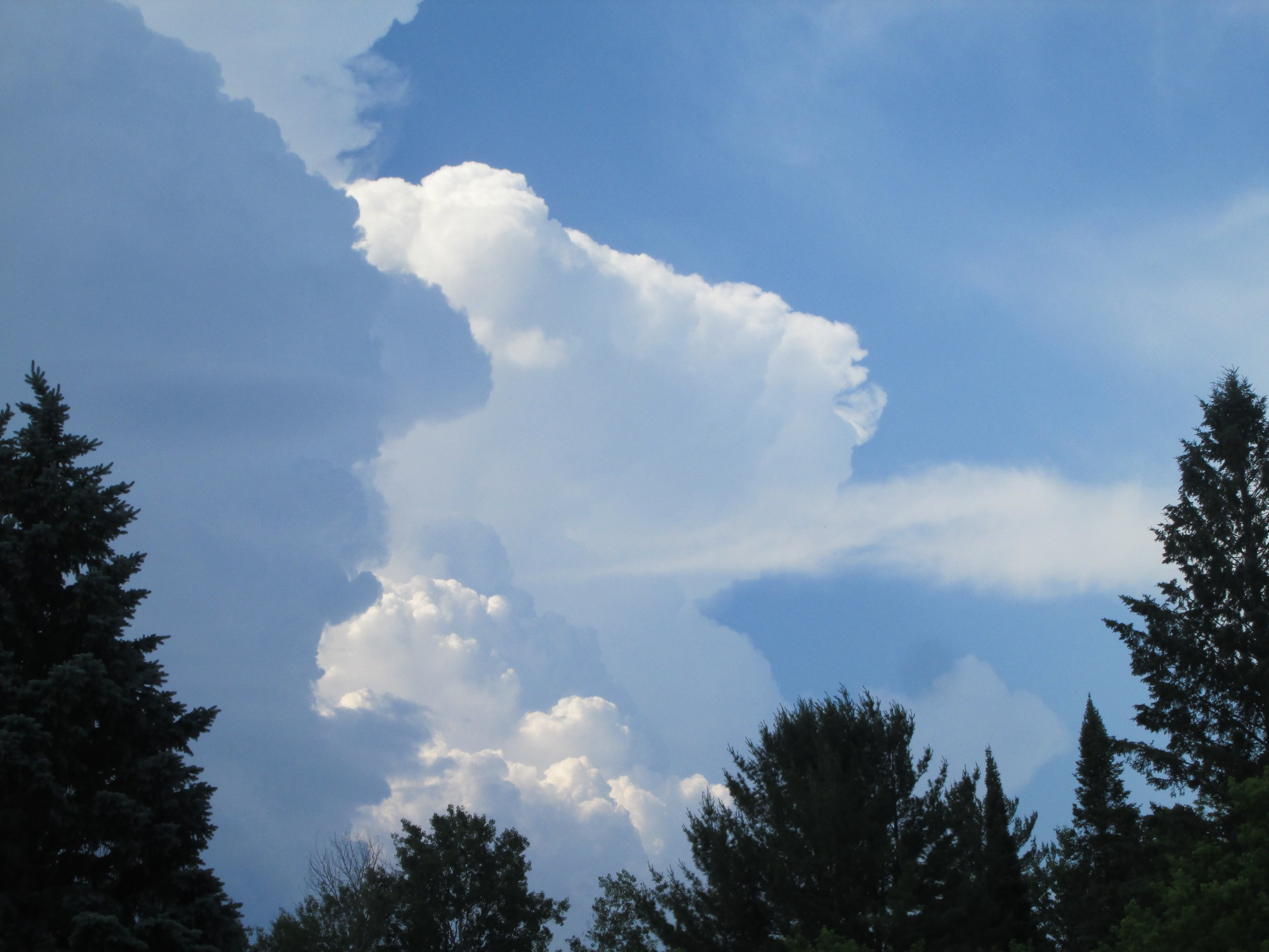 The sky above Michigan, our earthly home!