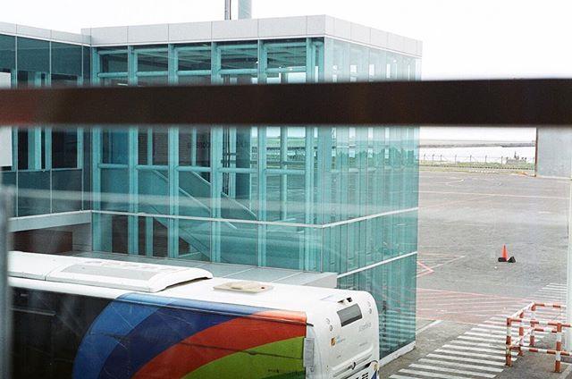 - Waiting to Fly - . Nikon FM2 Fuji Superia X-tra 400