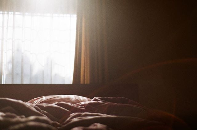 - Morning Has Broken - . Nikon FM2 Fuji Superia X-tra 400