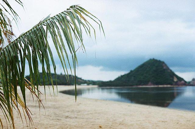 - Gloomy Beach Mood - . Minolta XE-1 Ektar 100