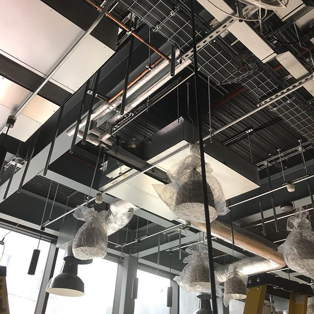 Here you can just see a row of rods hanging vertically off the ceiling - these will be what holds our steel tension cables in place. So needless to say that they need to be at the right place and the right angle. . . . . #workplacedesign #officeinterior #commercialdesign #officefitout #officedesign #archivoko #architecturaldetails #architectonics #architectonics_world #archigram #interior_deasign #interior123 #interiorarchitecture #ineriorproduct #Design_only #thethingswedo #lifeofanartist #makersgonnamake #loveourjob #fungandbedford