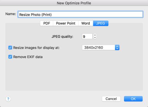 CS Print Profile.png