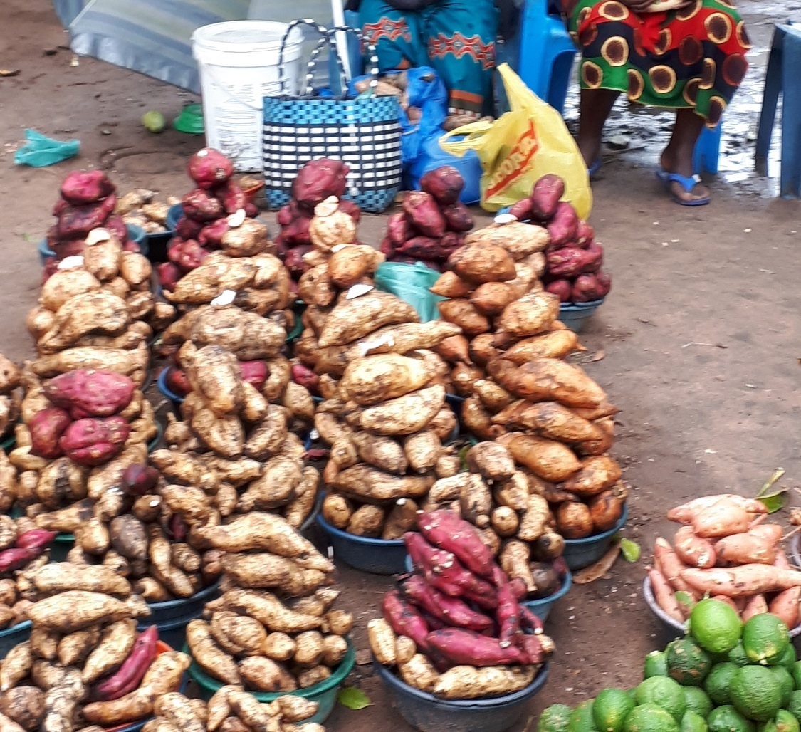 Sweet potatoes sold in abundance at the local market in Maputo, Mozambique. Photo: Anubha Garg