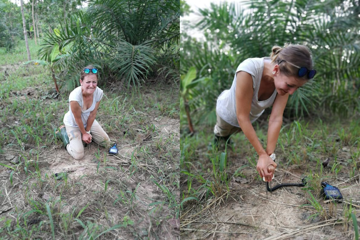 Very dense soils made it impossible to measure soil moisture with a TDR-device. Fieldwork meant that our workout was already included.