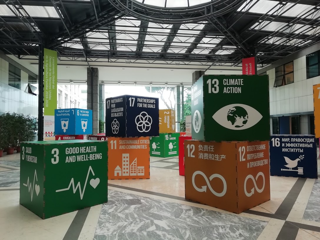 Decoration in the FAO main hall with blocks showing the 17 Sustainable Development Goals (SDGs) in all six official UN languages: English, French, Spanish, Chinese, Russian and Arabic.