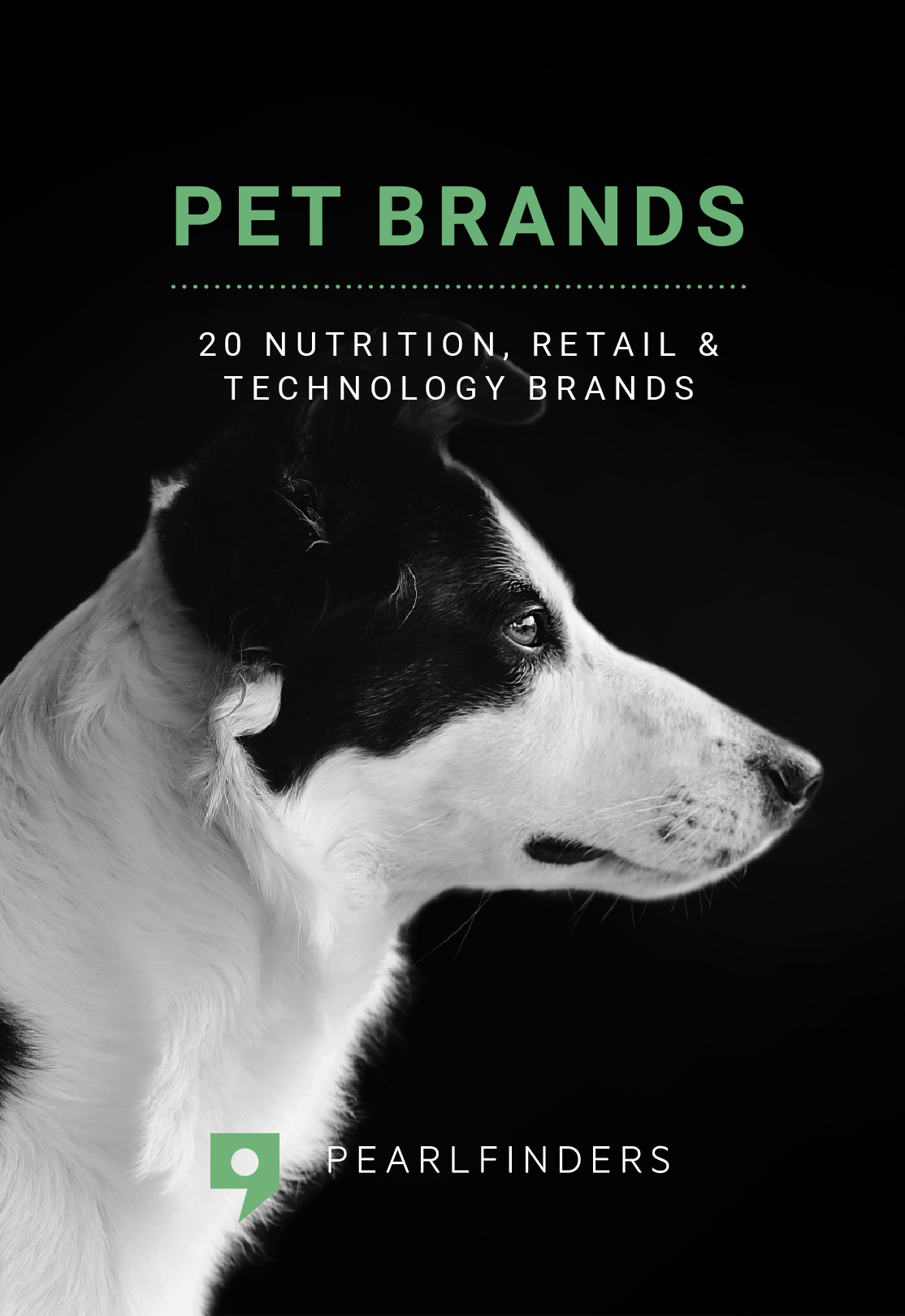 Pet brands cover.png