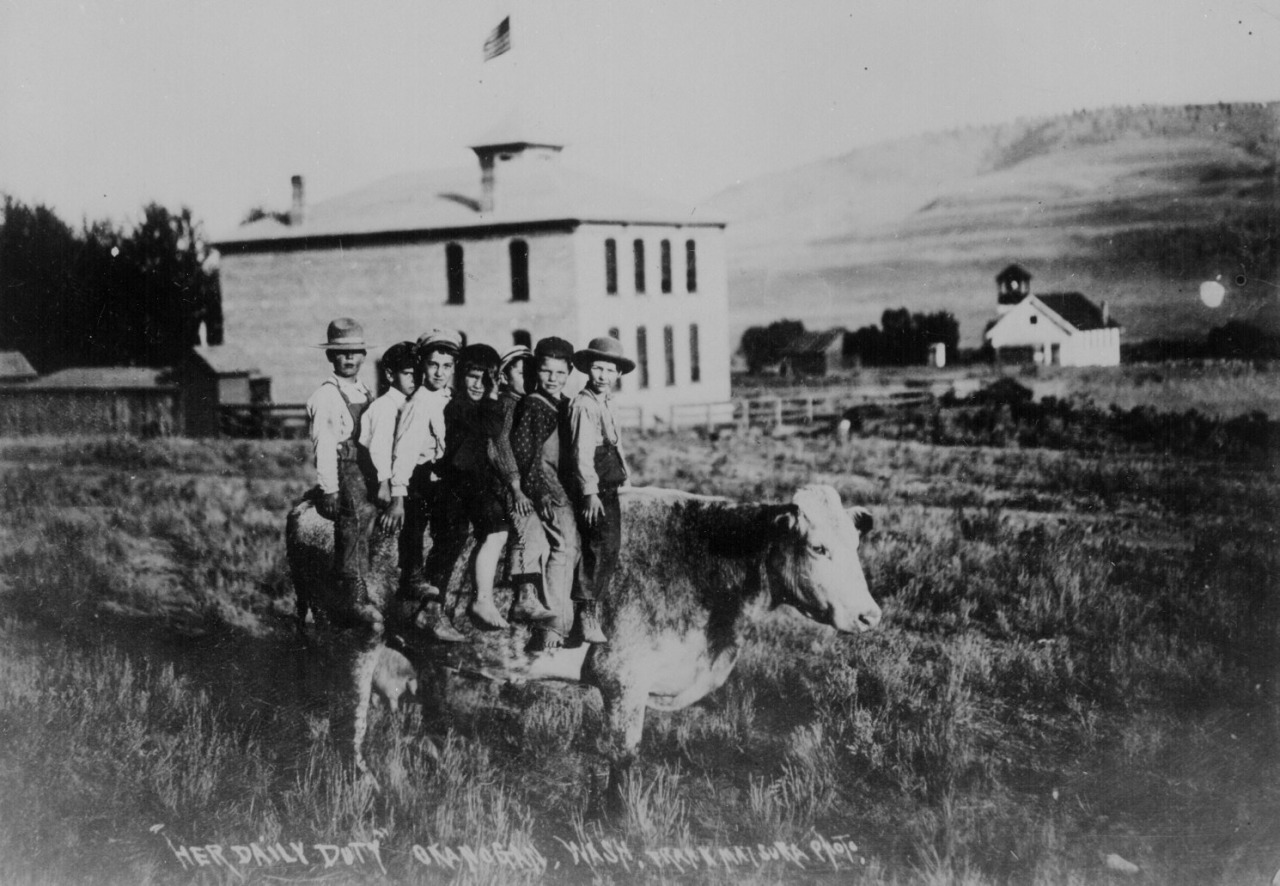 Cow with 7 Boys,  1907