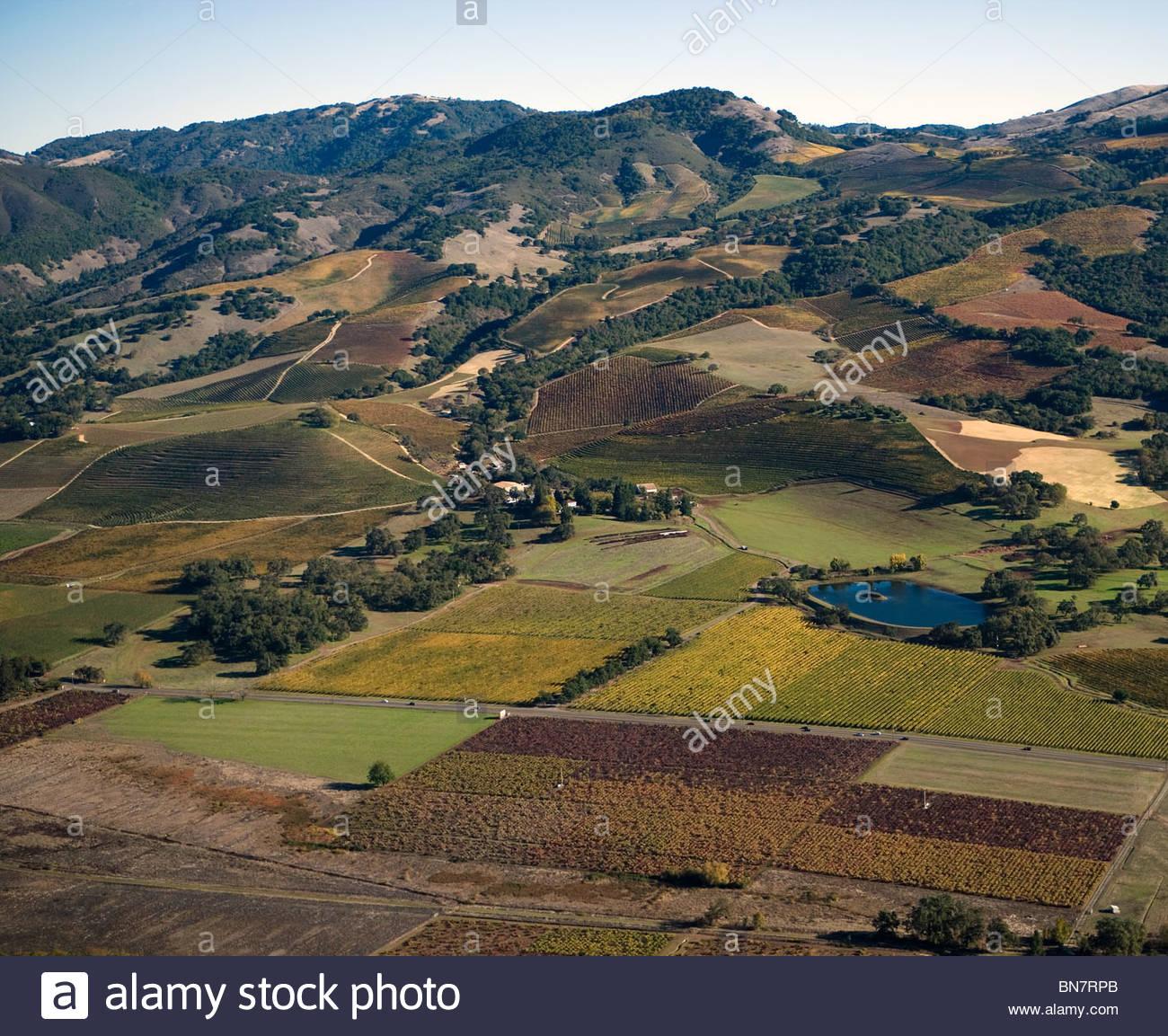 Mayacamas Vineyards - where Bing was caretaker