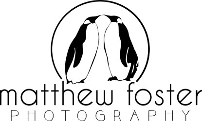 Matthew Foster Photography