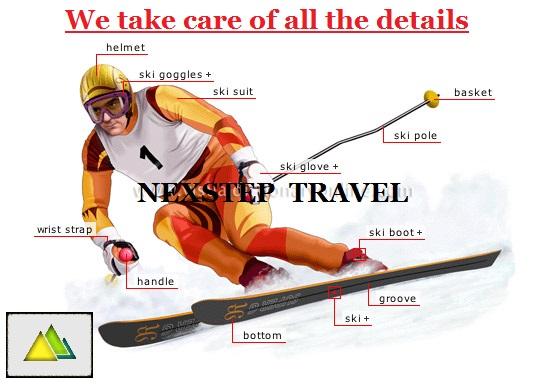 alpine-skier.jpg