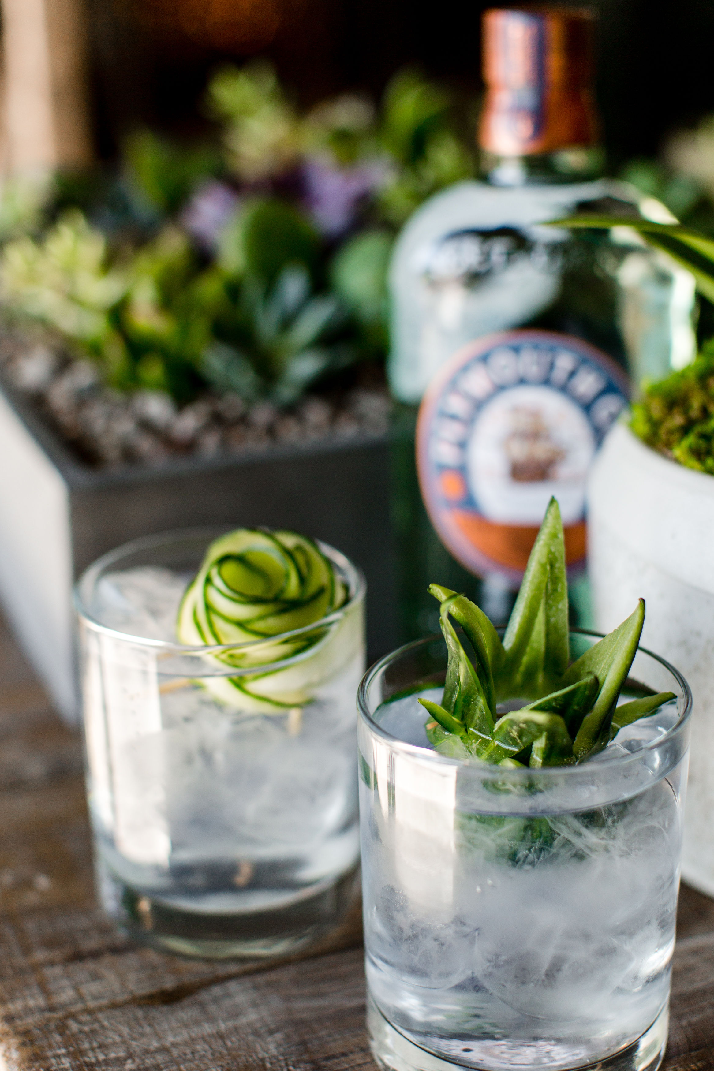 Succulent Gin + Tonic Bar by  Cocktail Academy