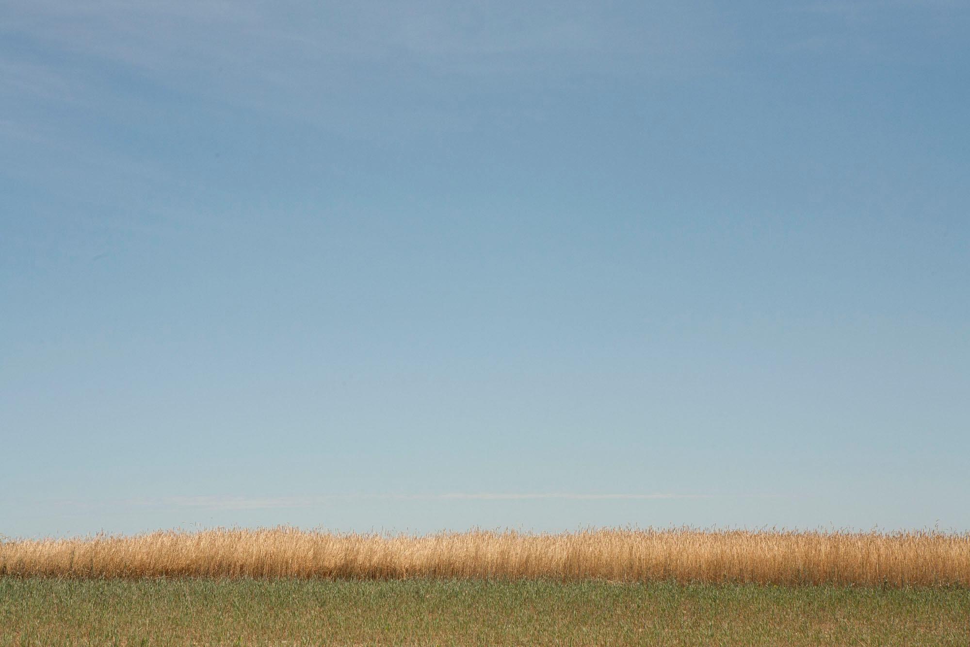lucille-khornak-scenery29.jpg