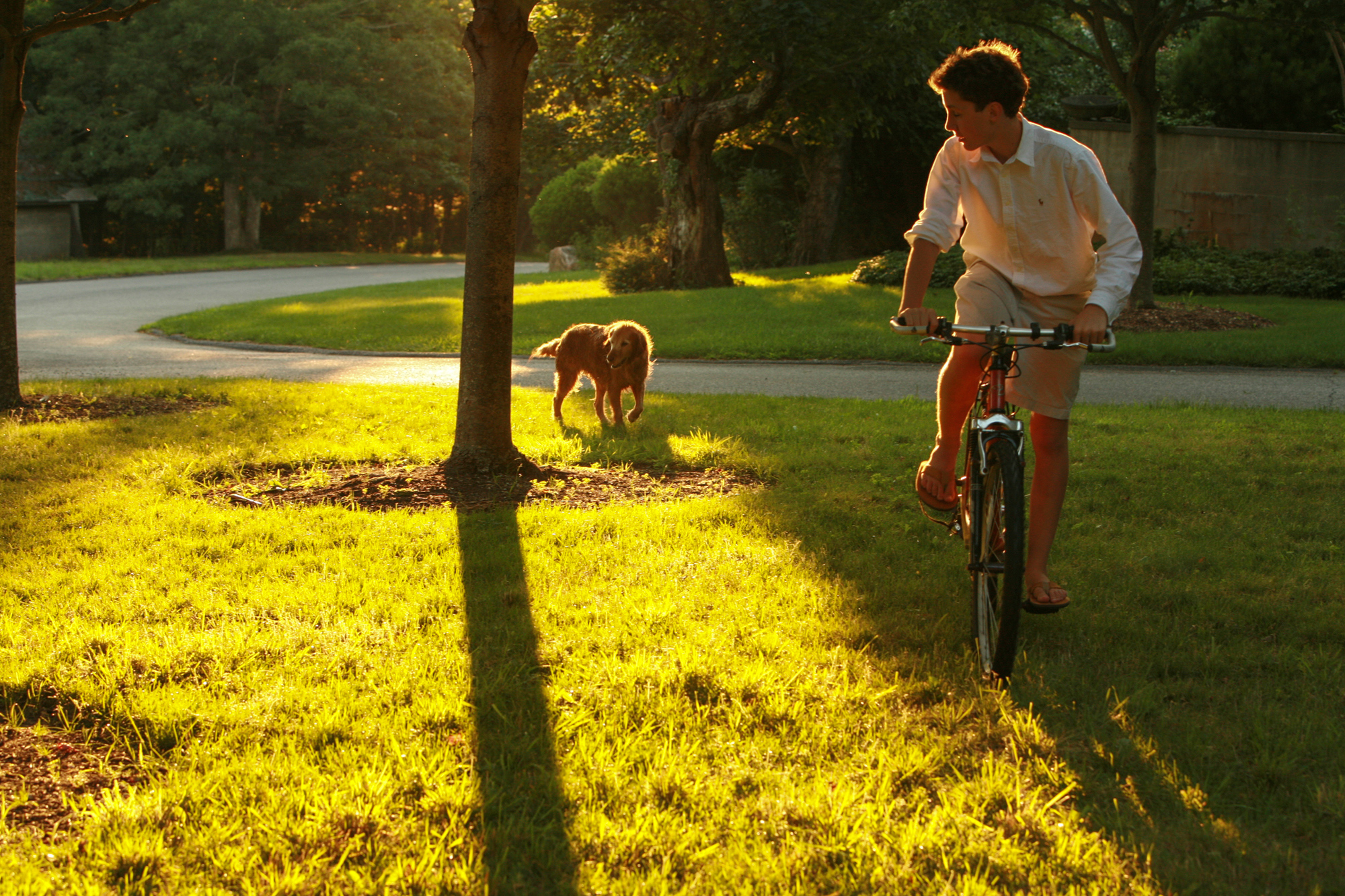 Dog Follows Teenage Best Friend on Bike