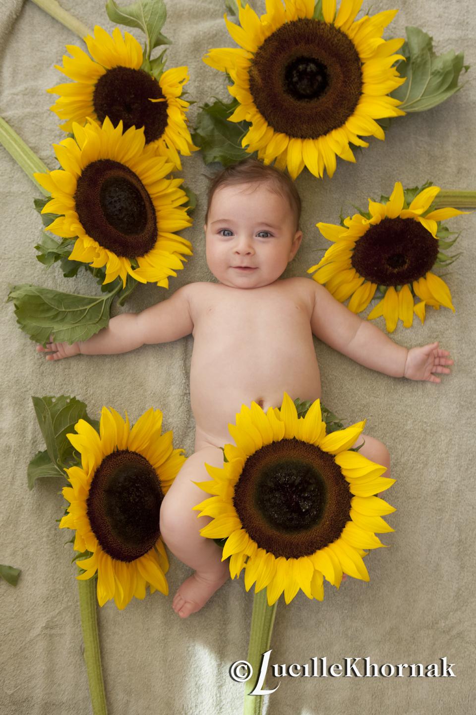 LKPhotography Sunflower Baby