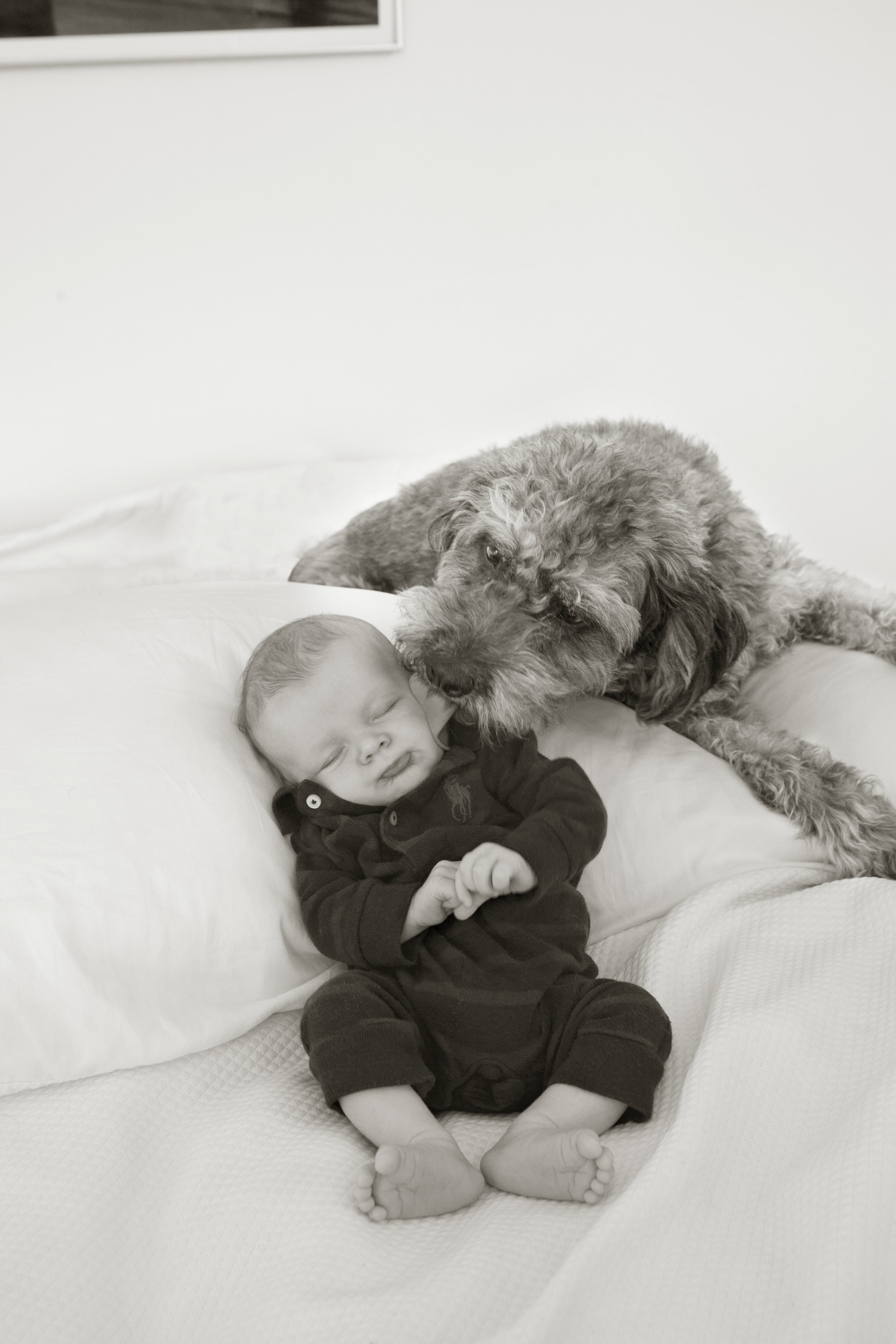 Precious newborn resting in loving company of man's best friend. Photo by Lucille Khornak.
