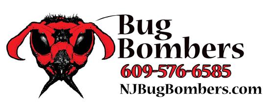 bug bombers logo.png