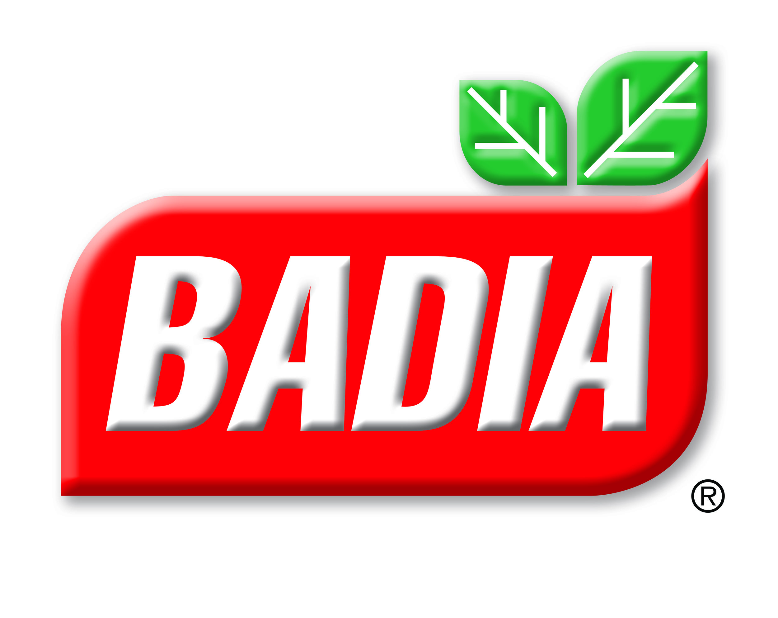 Badia Logo high res no ou.jpg