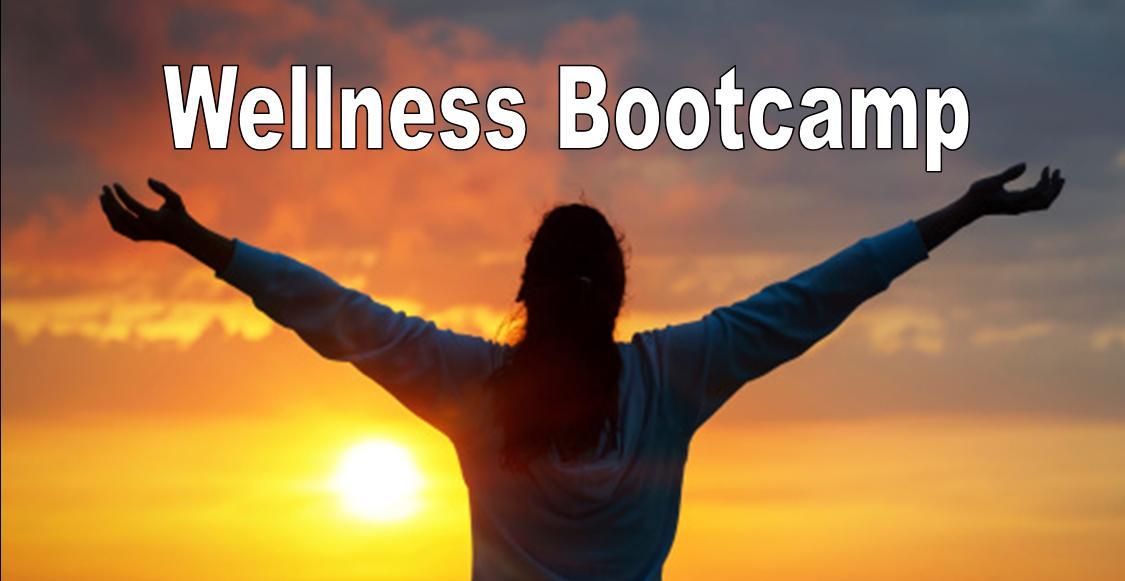 Wellness boot camp Header.jpg