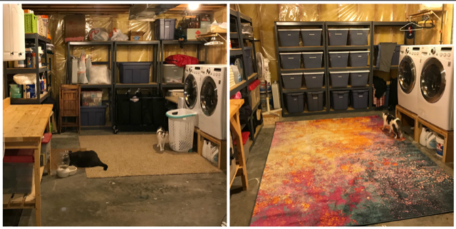 Storage Room Project 2018.png