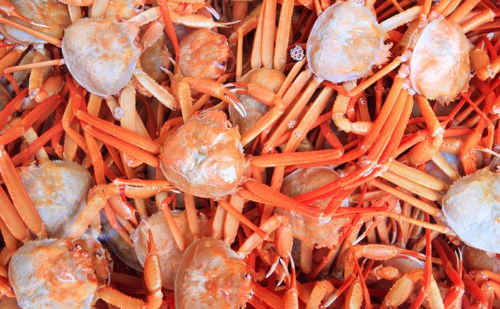 photo:VisitKorea.com