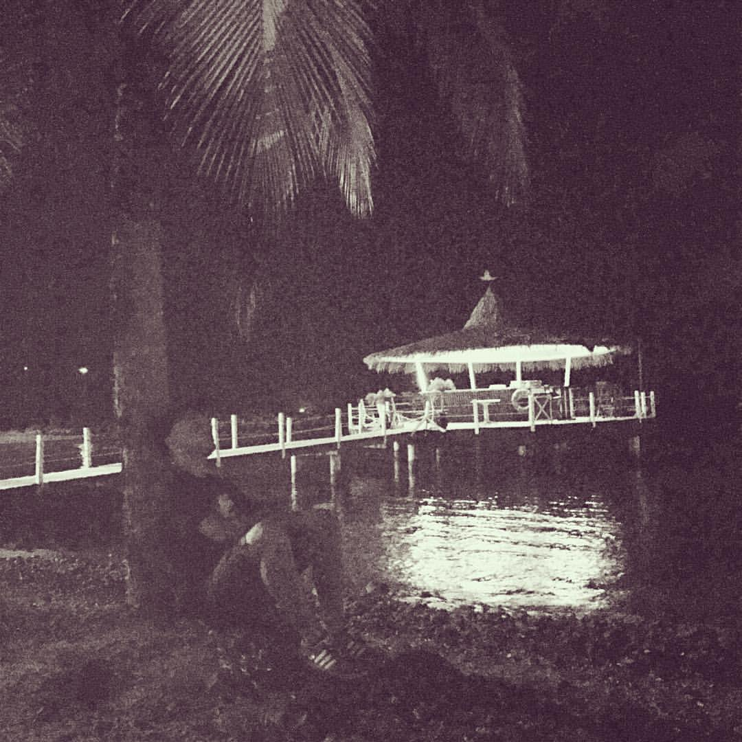 And then you sit next to a palm tree… #aftershow #martinique @marijusbaraban  #singerontheroad
