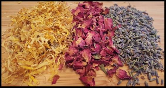 Earthbeat Herbals Herbs