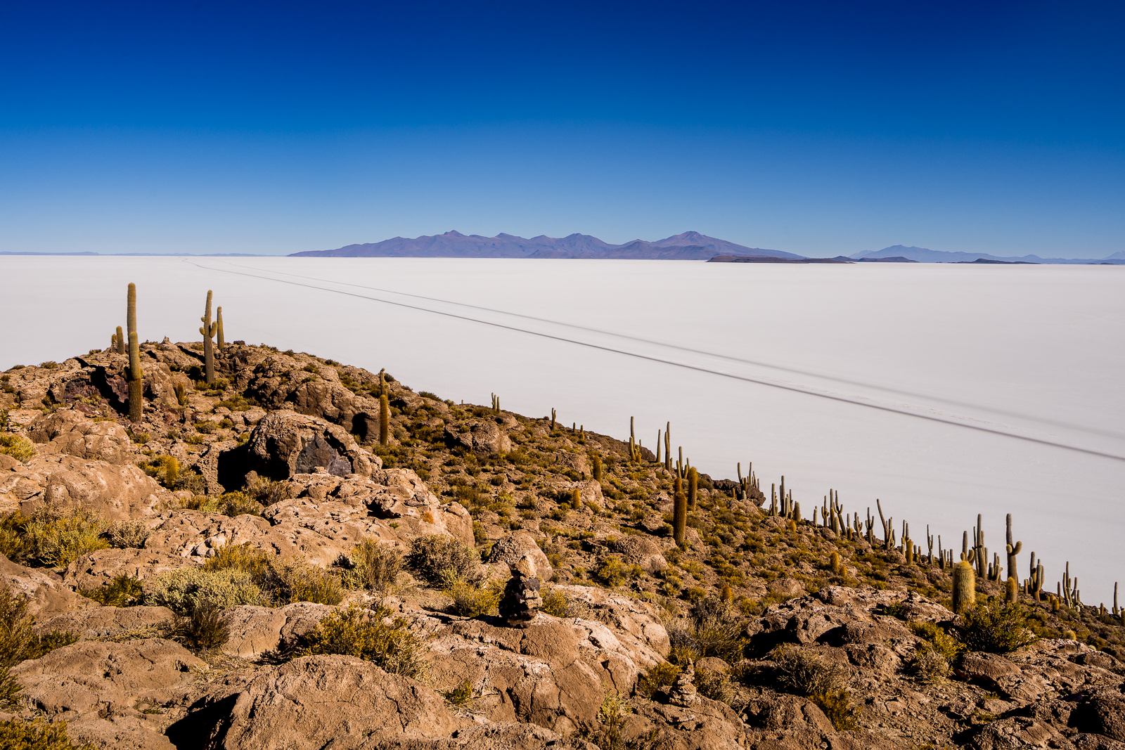 The salt flats seen from the top of cactus island